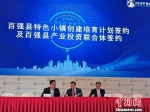 2018中国特色小镇博览会长沙启幕 - 湖南新闻网