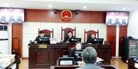 市人大代表政协委员到湘潭中院旁听庭审 - 法院网