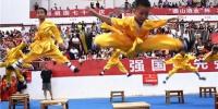 湖南省规模最大武术盛会!16个国家齐聚长沙展开巅峰对决 - 新浪湖南