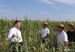 习近平在陕西榆林考察调研 - 卫生和计划生育委员会